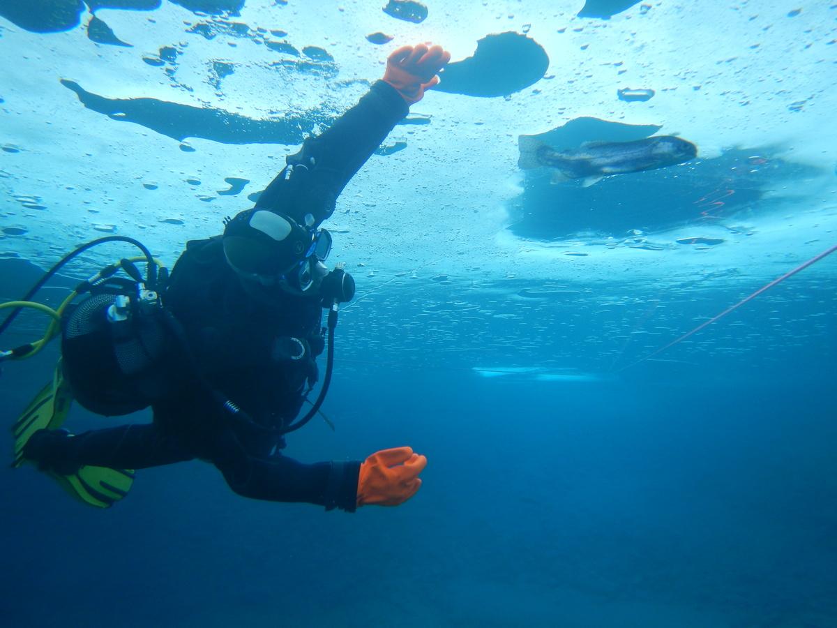 plongee-sous-glace-5