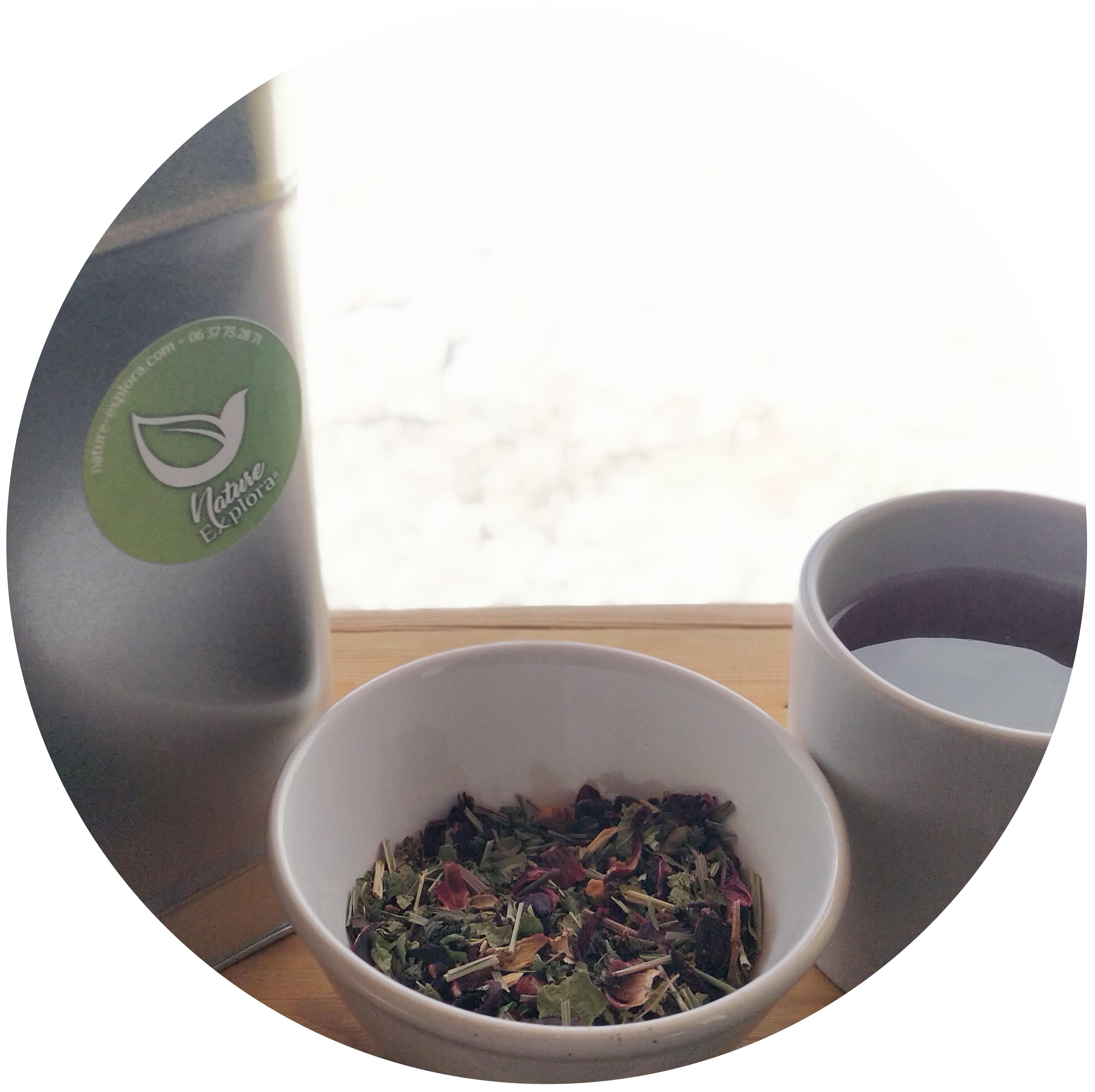 nature explora - des thés sur mesure